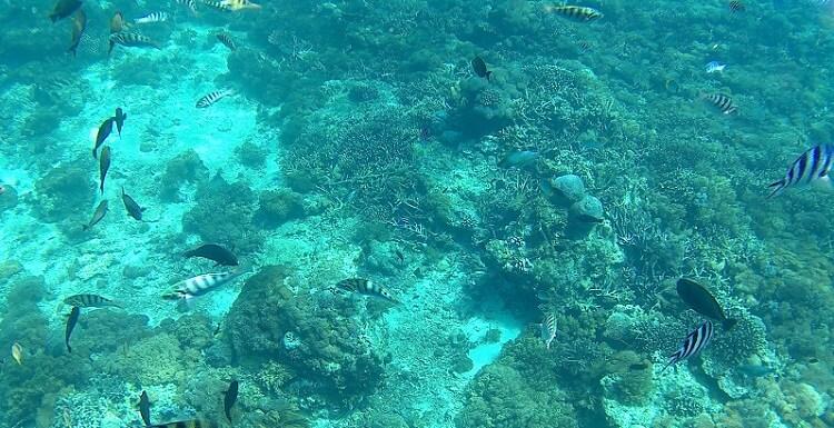レンボンガン島15