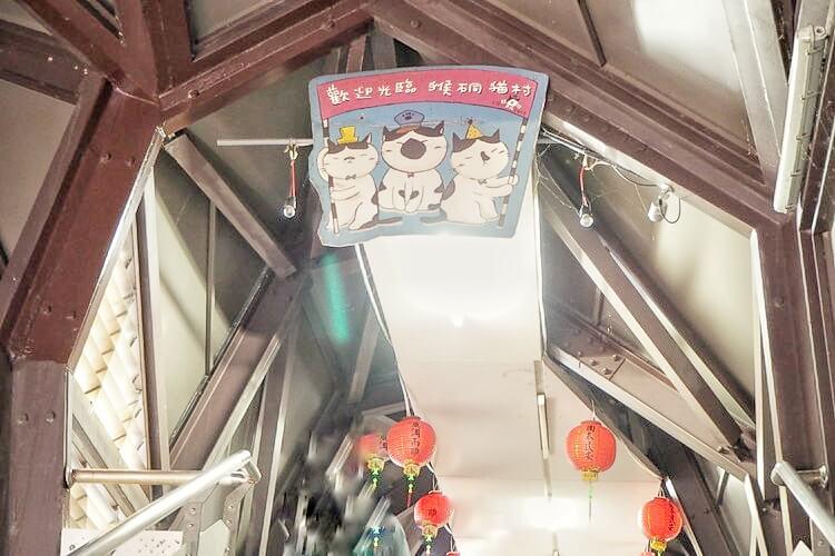 台湾 猫村15